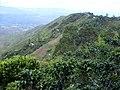 Los guaduales Balboa Cauca - panoramio (13).jpg
