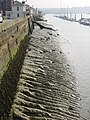 Low tide by Chatham Historic Dockyard - geograph.org.uk - 1658.jpg