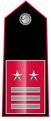 Luogotenente-qualifica-speciale.png