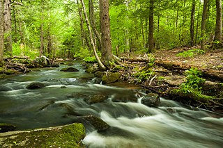 Mad River (Connecticut)