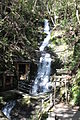 Magose Fudo Waterfall.JPG