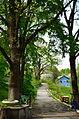 Main Alley Zelena Hirka (05).JPG