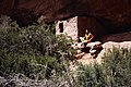 Man sitting next to one of the cliff dwellings at Mesa Verde National Park. (0da9c71ee5794dd2ab999e46e1d830dc).jpg