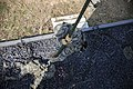 Marines Fast rope during Cobra Gold 16 160209-M-CX588-262.jpg