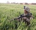 Marines secure Marjah (4525477277).jpg