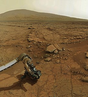 Life on Mars Scientific assessments on the microbial habitability of Mars