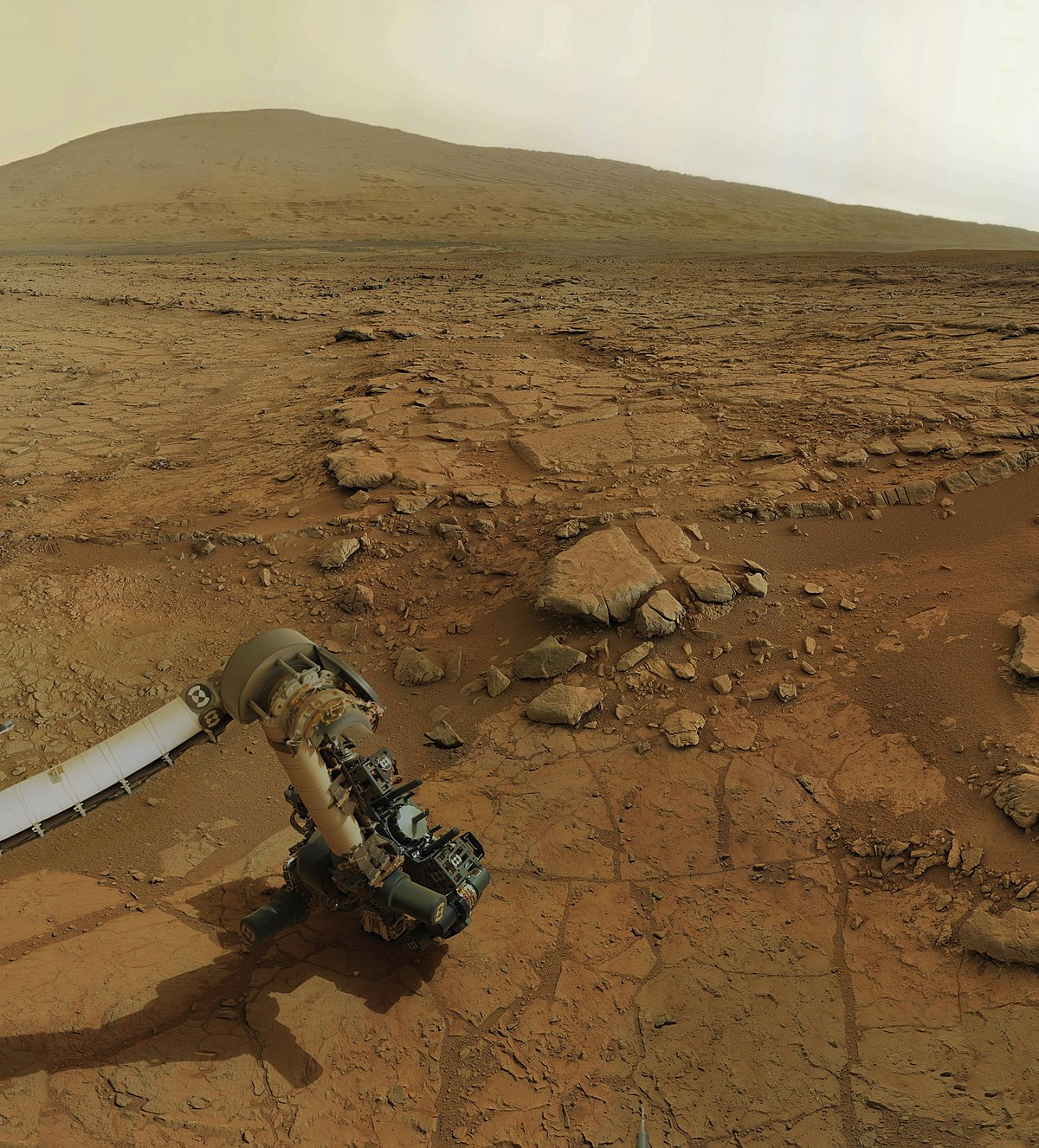 Life on Mars: Exploration & Evidence