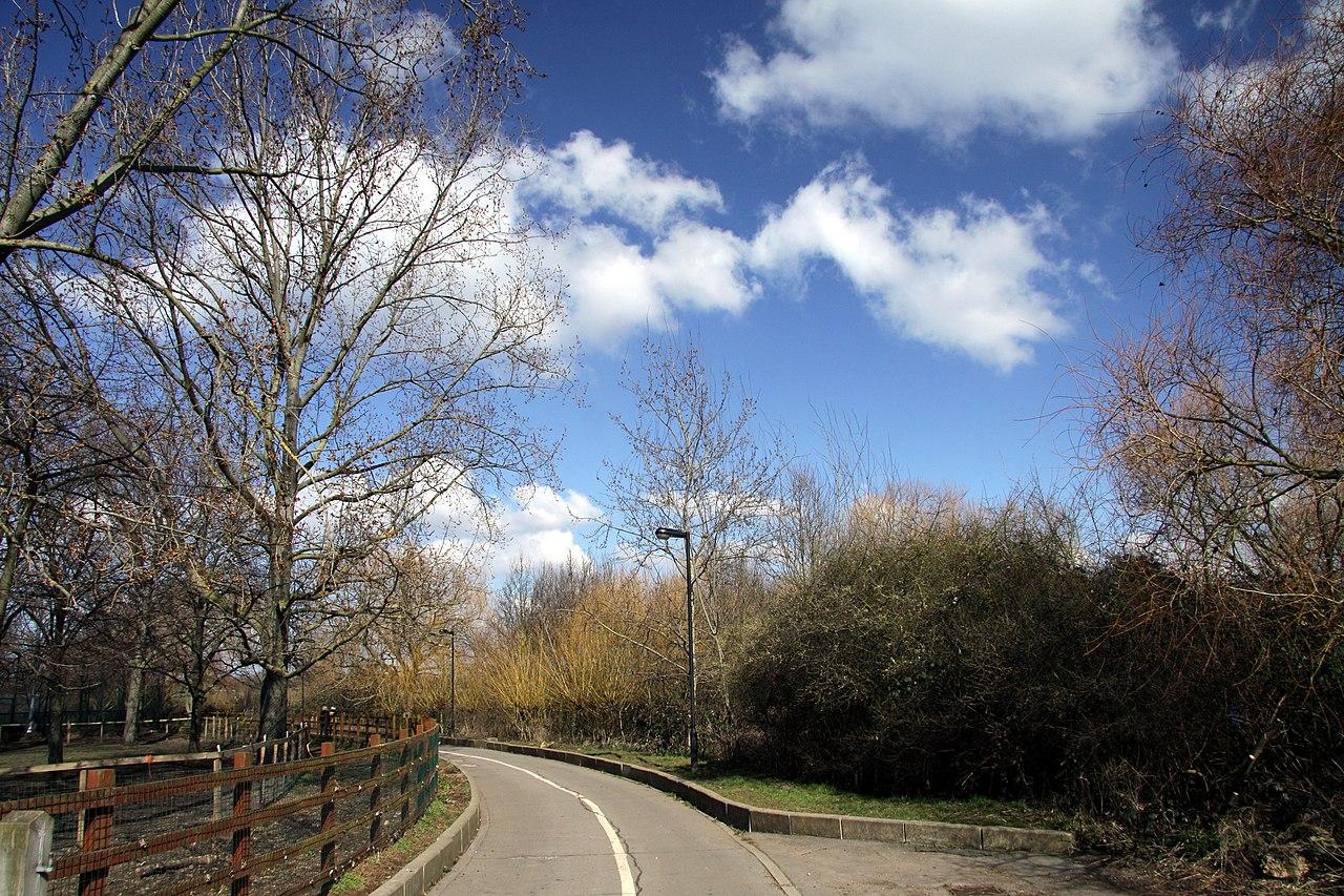Wormwood Nature S Way Walgreens
