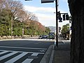 Marutamachi dori kyoto.JPG
