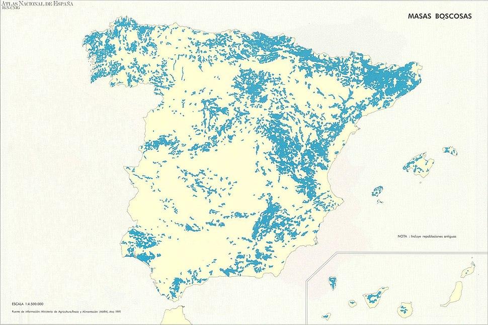 Masas Boscosas en España - Forests in Spain
