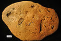 MeadvilleConcretion091912.jpg