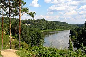 Die Memel bei Druskininkai, Litauen
