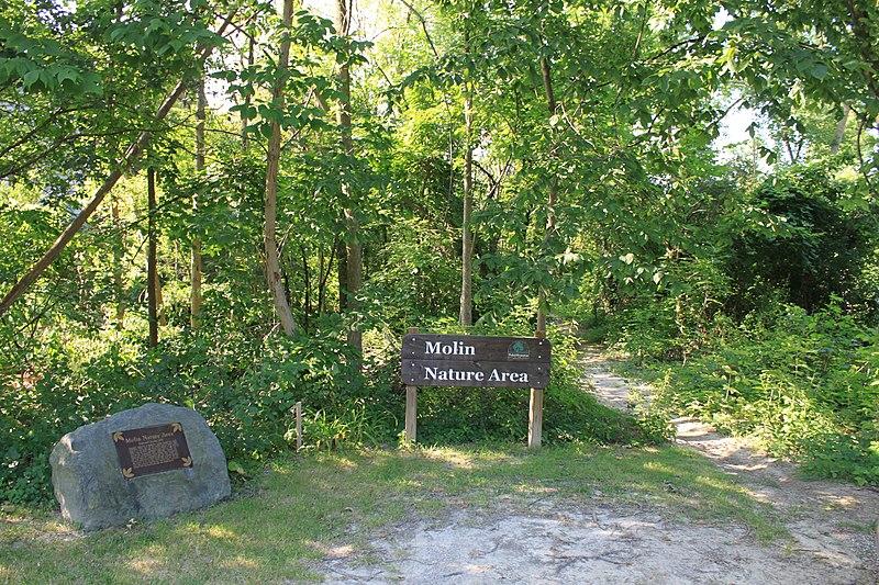 File:Molin Nature Area, Columbia Avenue ^ Powell Avenue, Ann Arbor, Michigan - panoramio.jpg