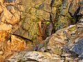 Molino Basin Waterfall - Flickr - treegrow (2).jpg