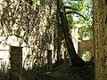 Monasterio de San Pedro de Montes de Valdueza (853209493).jpg