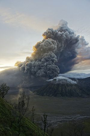 Mount Bromo - Image: Mount Bromo eruption 2011 01 22 5 30AM