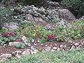 Mount Herzl Military Cemetery IMG 1358.JPG