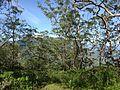 Mount Loelaco mountain landscape views (7).jpg