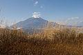 Mt.Fuji from Mt.Teppoginoatama 15.jpg