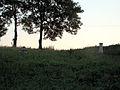 Myców - drewniana cerkiew greckokatolicka - otoczenie (01) - DSC03661 v1.jpg