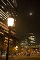 Mysterious moon (8250314671).jpg