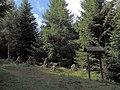 Náučný chodník - panoramio (3).jpg