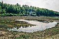 ND AmphibienbiotopBrockzetel2.jpg