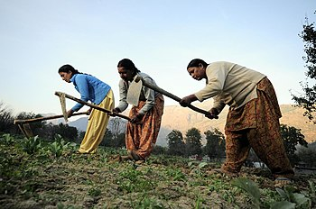 different types of agricultural practices in india