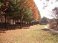 Nanjicheon-Park.jpg
