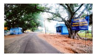 Nattathi Nadar - Nattathi Village in Tuticorin district