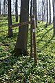 Naturschutzgebiet Ith - Hinweisschilder (3).jpg