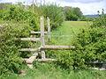 Near Bridgham Farm - geograph.org.uk - 1294746.jpg