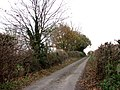 Neatly trimmed hedgerows - geograph.org.uk - 615043.jpg