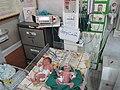 Neonatologia sekcio de hospitalo en Maŝhado (Irano) 001.jpg