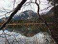 Neuschwanstein vom Schwansee.jpg