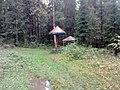 Nevyanskiy r-n, Sverdlovskaya oblast', Russia - panoramio (174).jpg