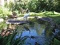 New Orleans 2007 NOLA Zoo Crane.jpg
