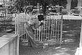 New Roads Louisiana Fence Painting All Saints Day 1938.jpg