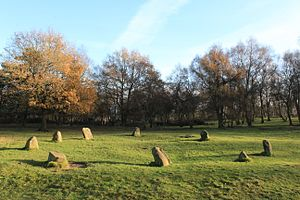 Nine Ladies - The Nine Ladies stone circle