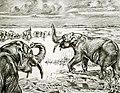 Notiomastodon.jpg