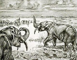 <i>Notiomastodon</i> genus of mammals (fossil)