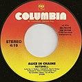 Nutshell by Alice in Chains (B-side Vinyl) (US-1995).jpg