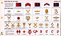 ONI JAN 1 Uniforms and Insignia Page 112 Portuguese Navy WW2 Shoulder boards and sleeve insignia June 1943 Field recognition. US public doc. No known copyright.jpg