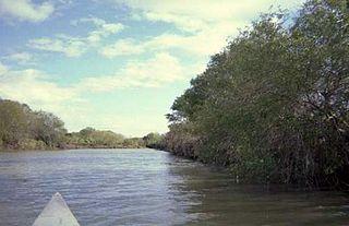 Oso Creek (Texas)