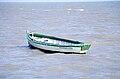 Ostréiculture. Île d' Oléron- une barque d' ostréiculteur en bois (1).jpg