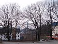 Ostrava, slezská, pohled na radnici - panoramio.jpg