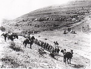 Column of soldiers marching up a hillside with mounted guards