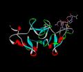 Oxytocin-neurophysin.png