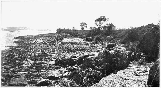 PSM V74 D512 Harpswell laboratory beach at low tide.png