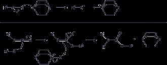 Polyurethane - PU reaction mechanism catalyzed by a tertiary amine